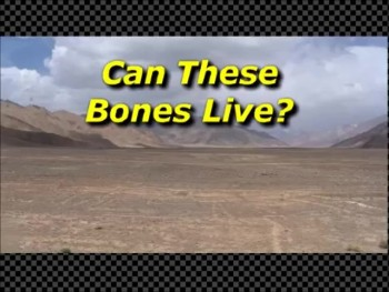Can These Bones Live - Randy Winemiller