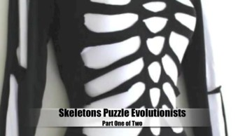 Skeletons Puzzle Evolutionists (Part 1 of 2)