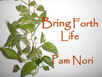 Bring Forth Life by Pam Nori (Official Pro-life Lyric Video)