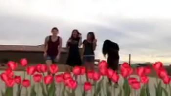 Girls Video - Gold