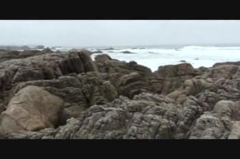 Pebble Beach. Monterey