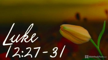 BibleStudyTools.com: 3 Words in, and This Version of Luke 12 Brought Me Peace!
