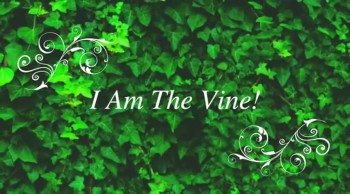 I Am The Vine!