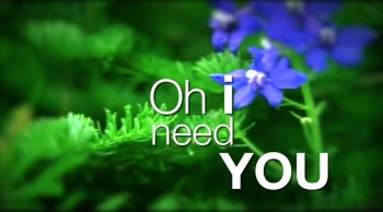 Philippians 4:13: I NEED YOU by Beth Hull