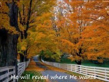 Let Him Lead You (Noteworthy Christian Music)