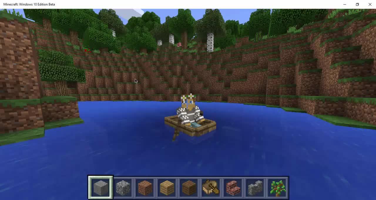Minecraft windows 10 editon!
