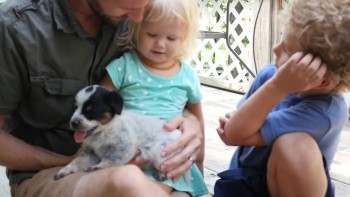 Our baby loves playful and cute adopted puppy | Burykin Family