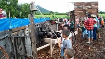 Waimanalo Country Farms Field Trip (2015)