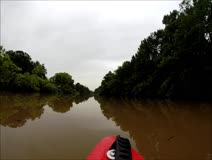 Mr. Brown Kayaks Down Bayou Teche