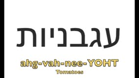 How to sayTomato in Hebrew