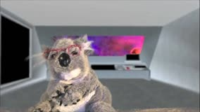 Comments from the Koala 19: Searching for God