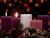 The Second Sunday of Advent:  The Way of Peace