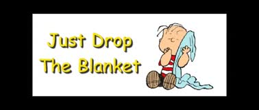 Just Drop The Blanket - Randy Winemiller
