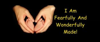 I Am Fearfully And Wonderfully Made - Randy Winemiller