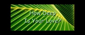 How Deep Is Your Love? - Randy Winemiller