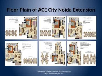 Ace city Presents Flats and Apartment in Noida Extension Call 9250007877