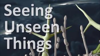 Seeing Unseen Things