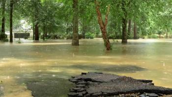 The Long Cleanup begins in Louisiana