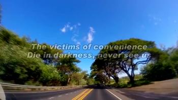 Victims Of Convenience by Don Wigton