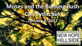 Moses and the Burning Bush - Cari Fydirchuk