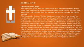 March 8th – Numbers 13:1 - 14:45 - Reading