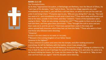 March 9th - Mark 11:1-19 - Reading