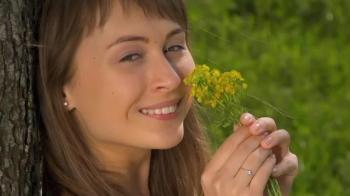 Flor de la Hierba