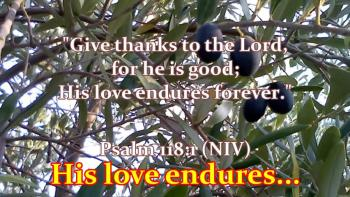 Give Thanks Unto The Lord (Psalm 118:1)