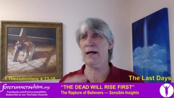 Last Days: The Dead Will Rise First