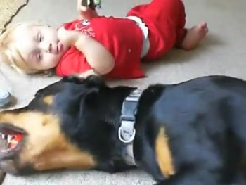 An Adorable Baby and His Best Friend, a Rottweiler