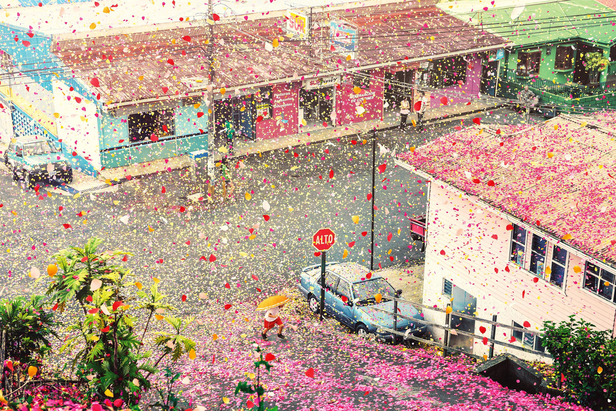 Flower petals cover the local town.