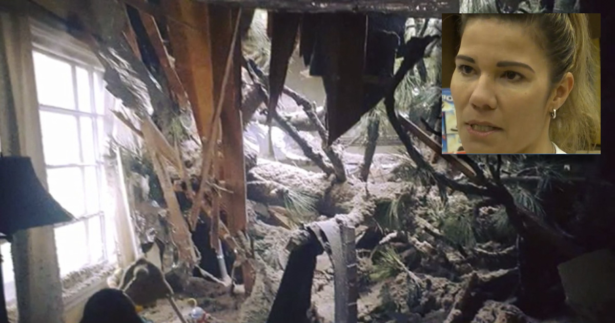 Mom & Divine Intervention Save Baby From Crashing Tree