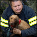See How This Frantic Dog Stuck in Gorge Gets an Amazing Rescue