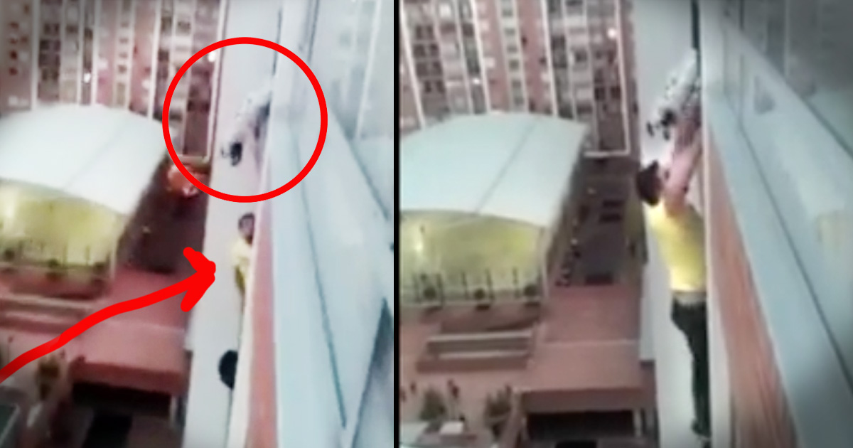 When He Saw A Dog Dangling 13 Stories Above The Ground He Started To Climb.  This Rescue...JAW DROPPING!