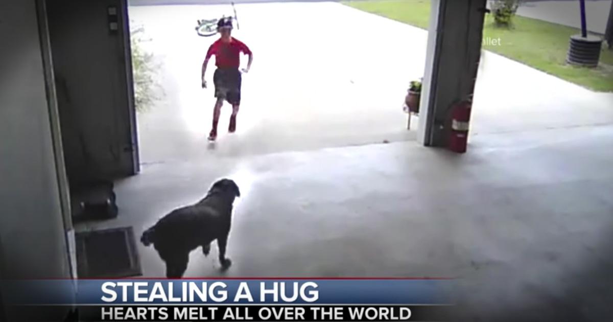 Little Boy Sneaks Into A Garage To Hug A Dog