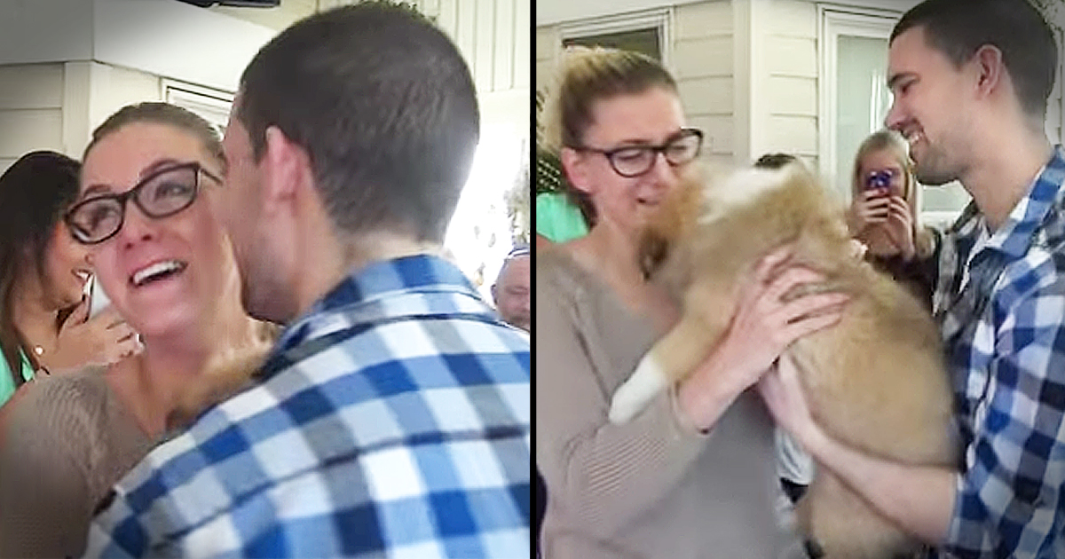 Boyfriend Surprises Girlfriend With Elaborate Proposal Complete With Puppy