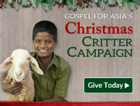 Christmas Critter Campaign