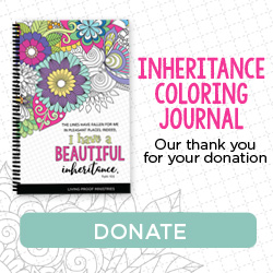 Inheritance Coloring Journal