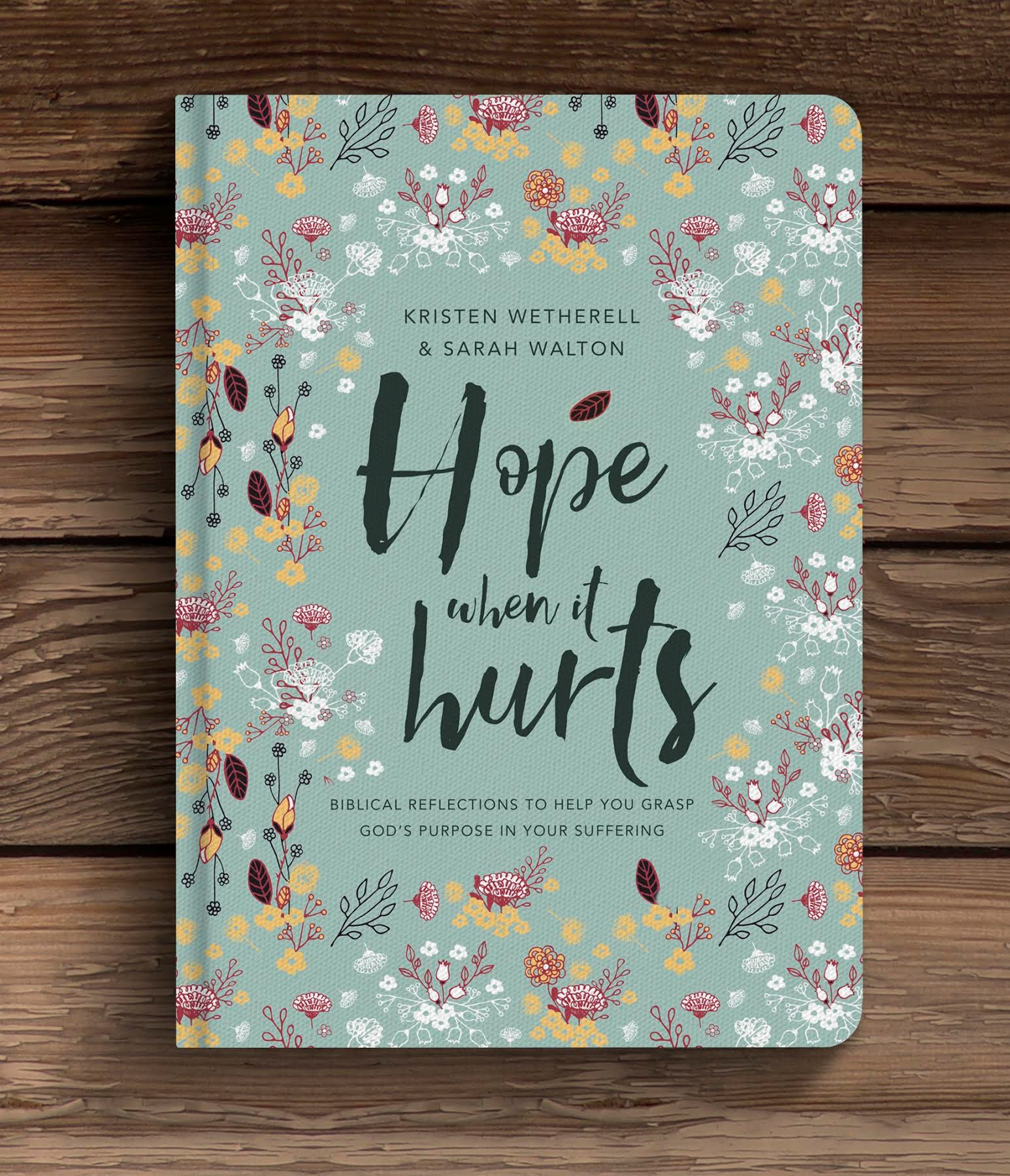 Hope When it Hurts Book by Kristen Wetherell and Sarah Walton