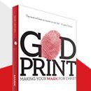 Godprint: Making Your Mark for Christ by Skip Heitzig