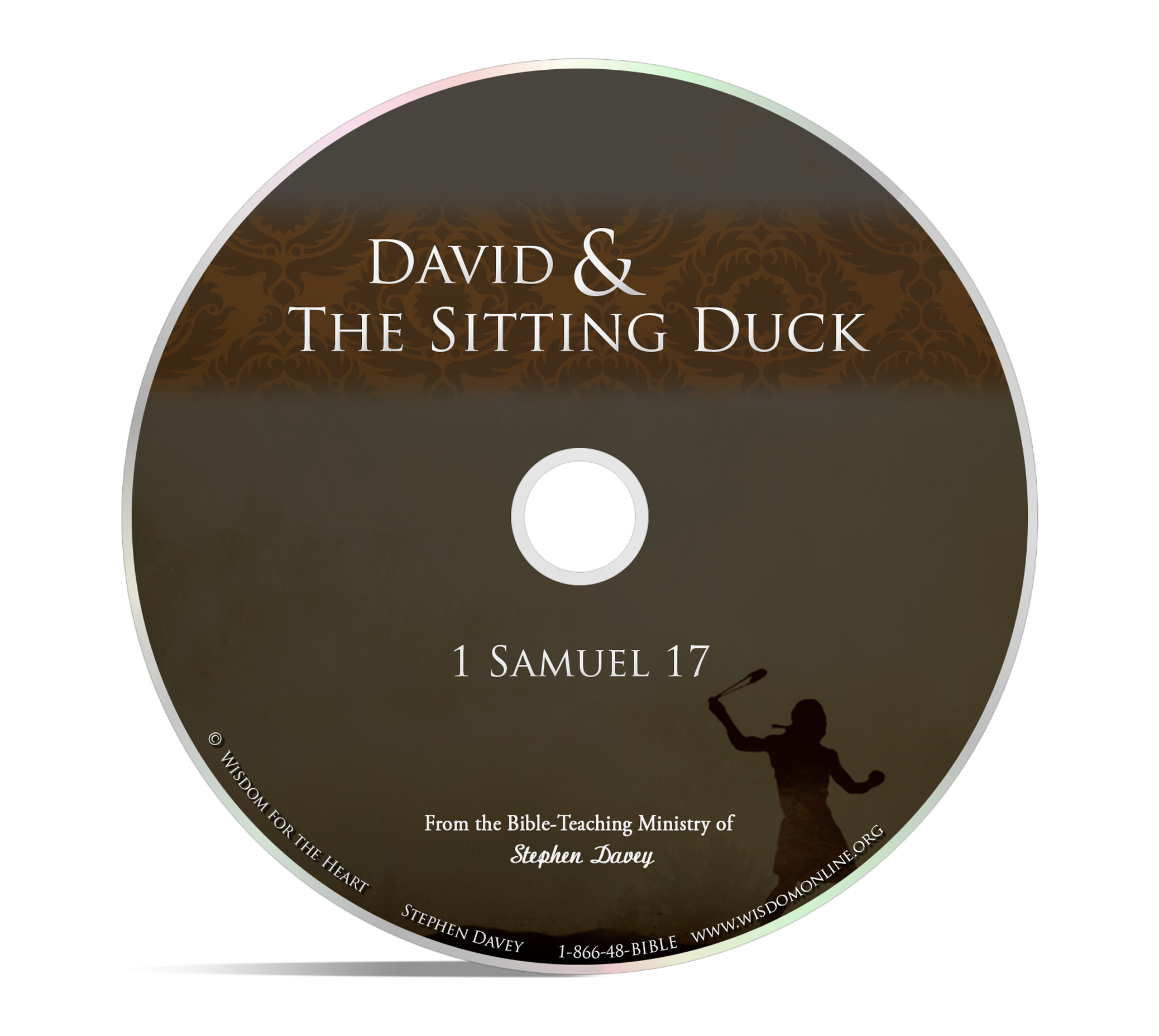 David and the Sitting Duck - CD